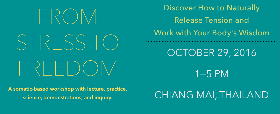 stress-free workshop in Chiang Mai