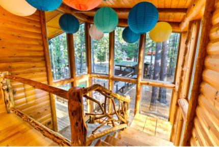 Enchanted Treehouse Lake Tahoe