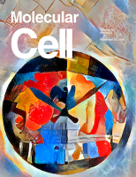 Cover of Molecular Cell