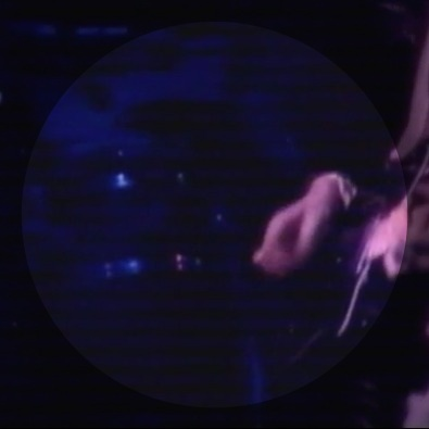 Fool To Cry (Live in Paris 1976)