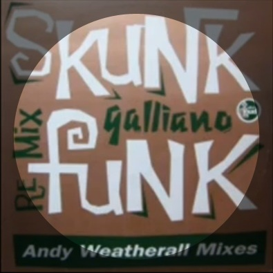 Skunk Funk - Andy Weatherall Cabin Fever Dub mix