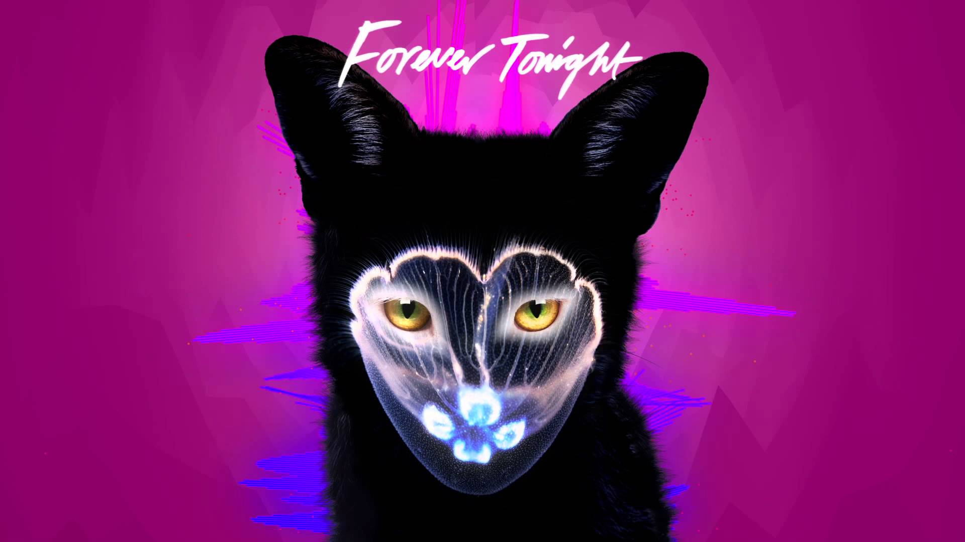 Forever Tonight by Galantis | This Is My Jam