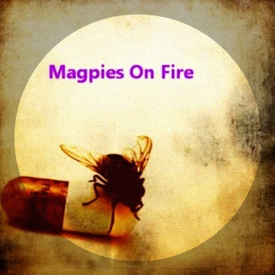 Magpies on Fire