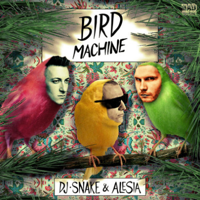 Bird Machine