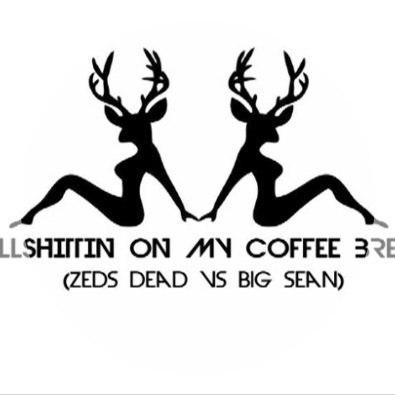 Bullshittin On My Coffee Break (Big Sean vs Zeds Dead)