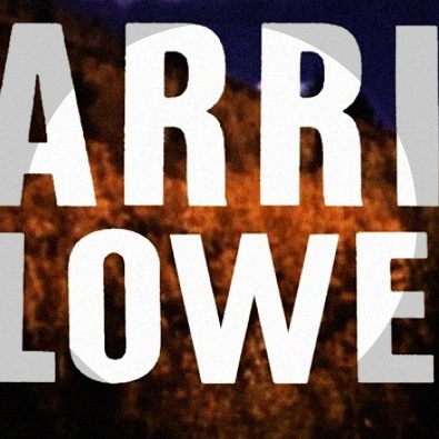 Carrie and Lowell (preview)