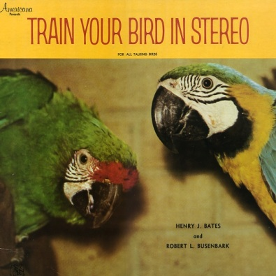 Train Your Bird In Stereo [Side 2]