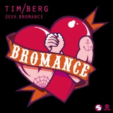 Seek Bromance (Avicii Vocal Extended)