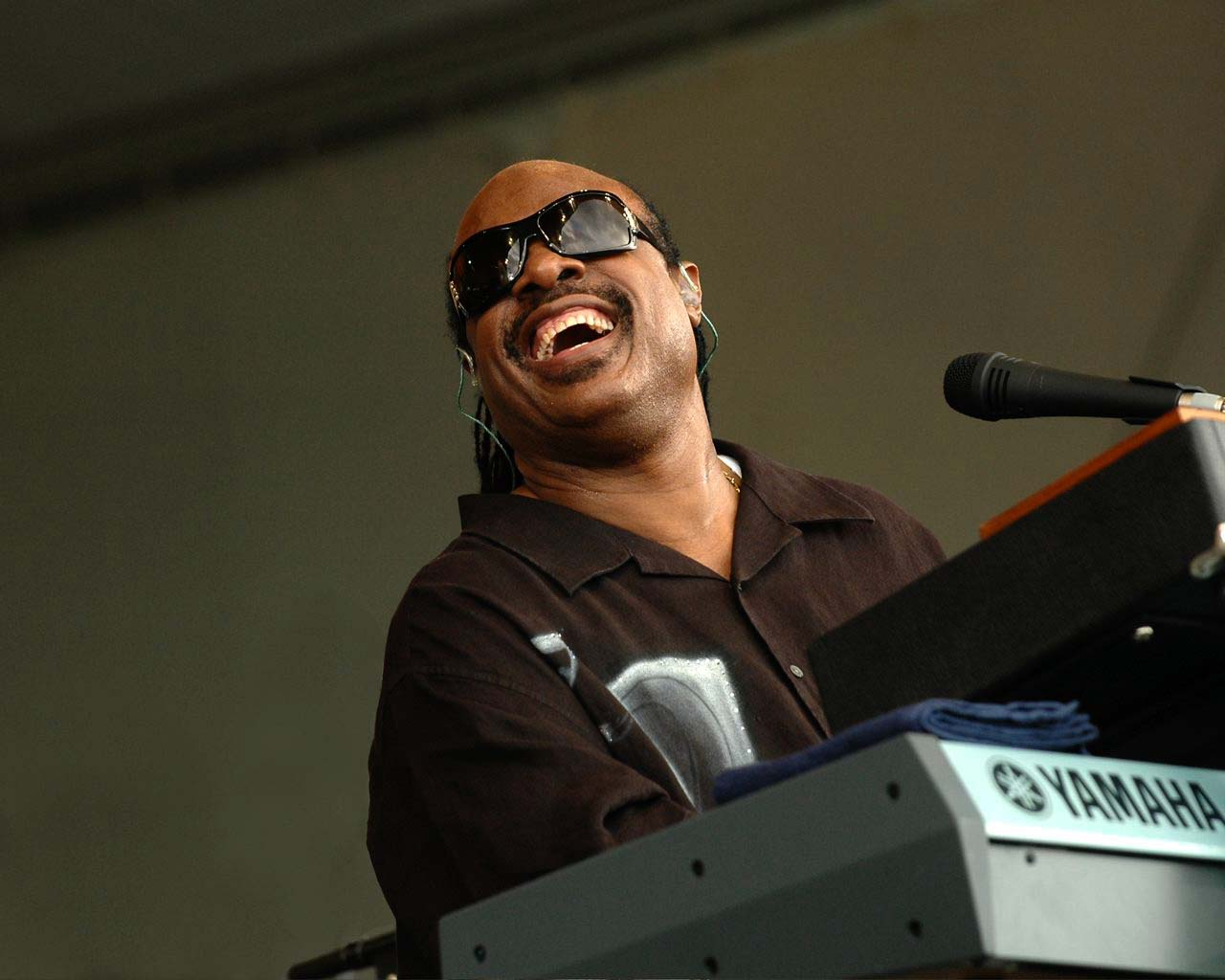 stevie wonder essay My essay about the awesome, amazing stevie wonder i wrote this for a scholarship, (hopefully a winner.