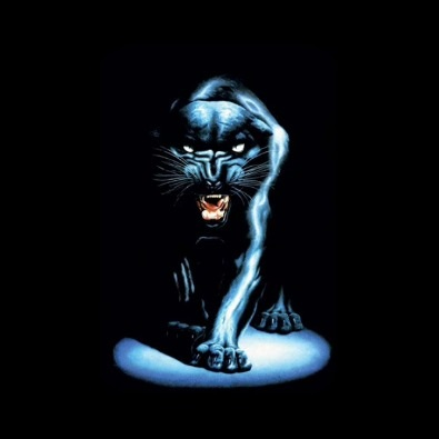 Mind of a Panther