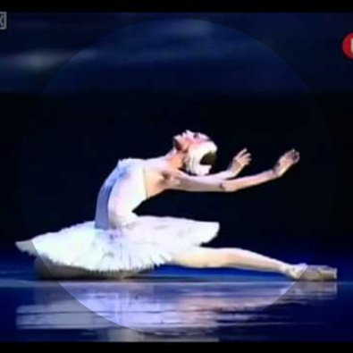 Le Cygne (The Dying Swan)