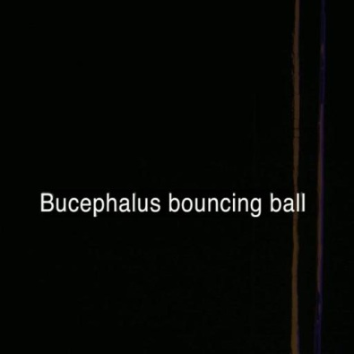 Bucephalus Bouncing Ball