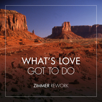 What's Love Got To Do With It? (Zimmer Rework)