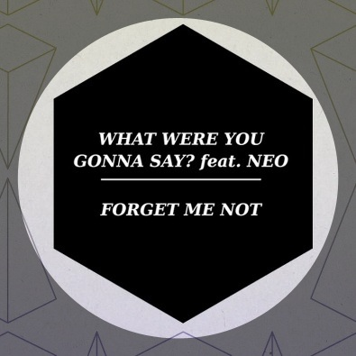 What Were You Gonna Say (Auntie Flo Remix)
