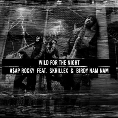 Wild For The Night
