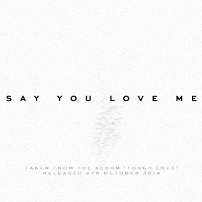 Say You Love Me