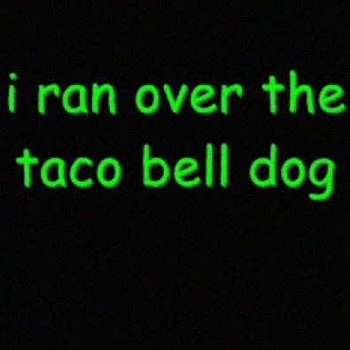 I Ran Over the Taco Bell Dog