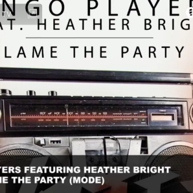 Don't Blame The Party (Mode)