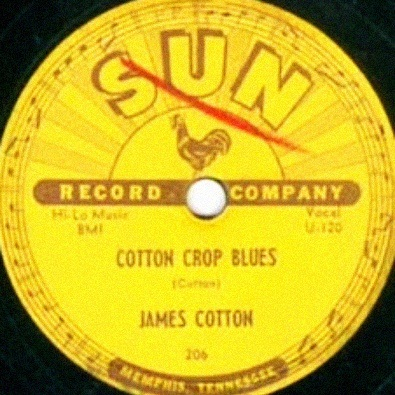 Cotton Crop Blues