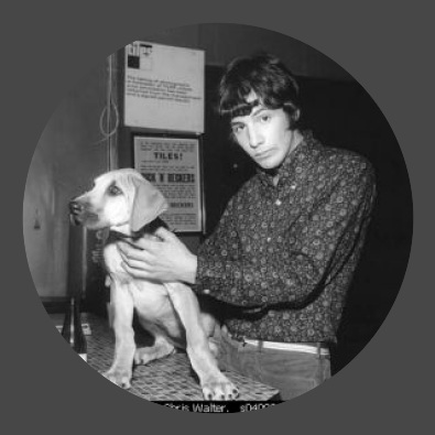 Cat Stevens / I Love My Dog