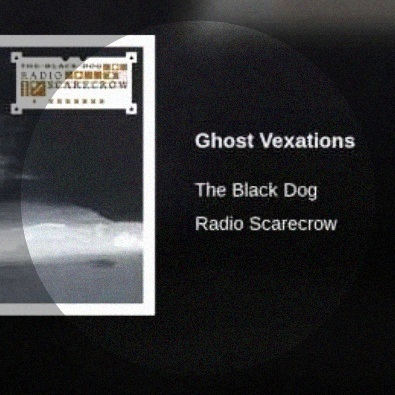 Ghost Vexations