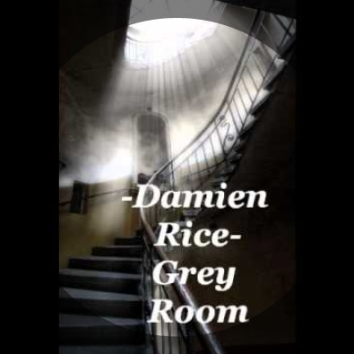 Damien rice grey room live webcam