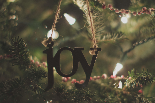Advent Joy - Today Daily Devotional