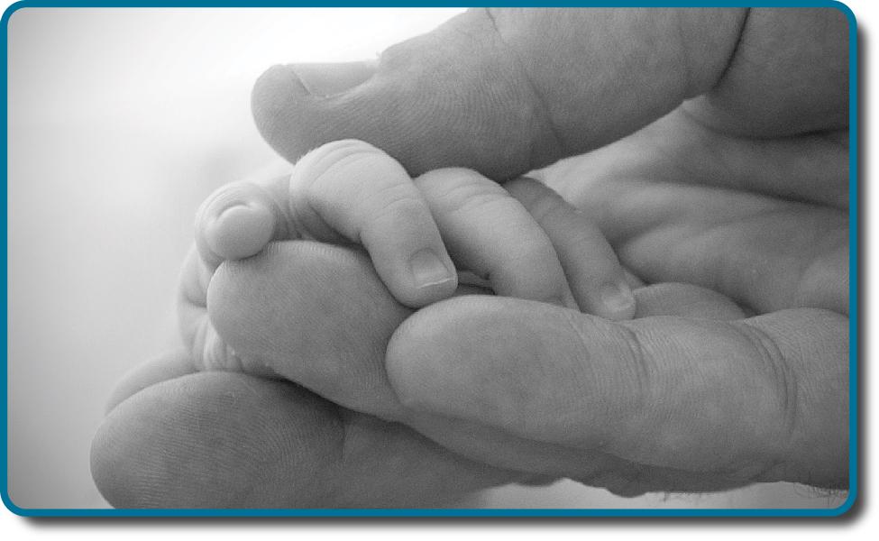 OpenStax Psychology Chapter 9 Lifespan Development Top Hat