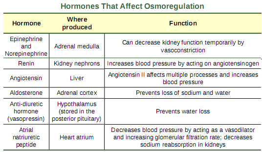 OpenStax: Biology   CH41: OSMOTIC REGULATION AND EXCRETION