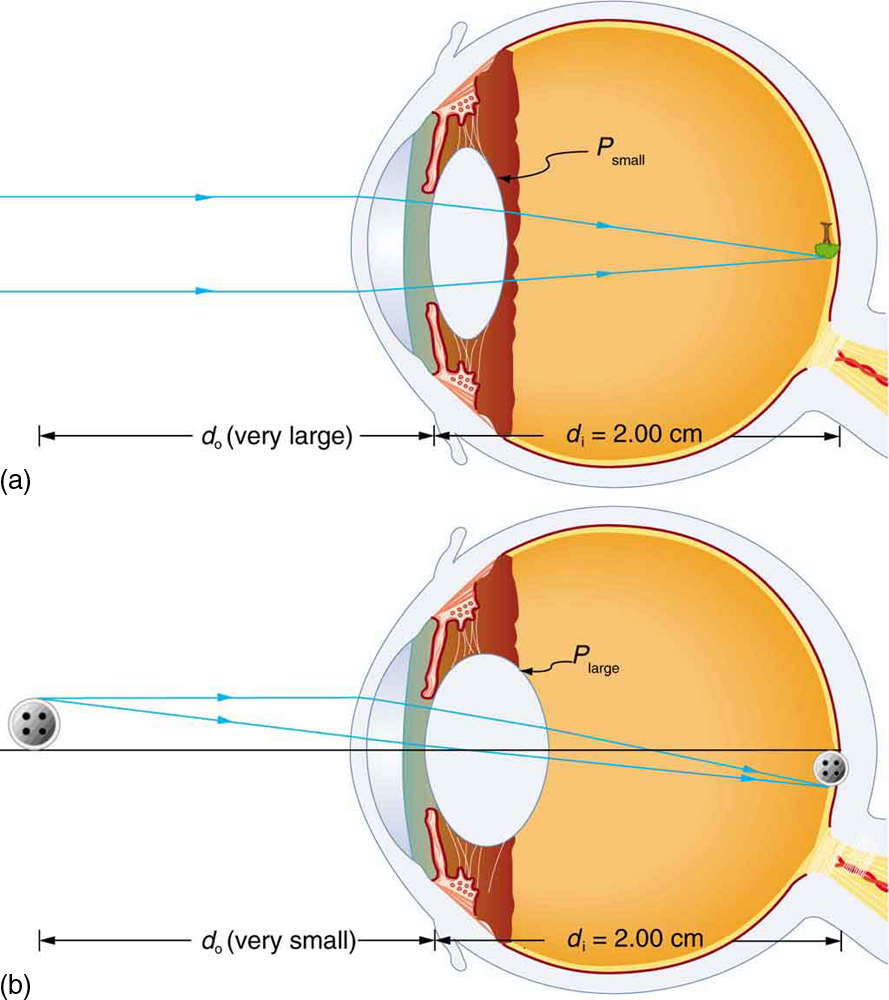 Openstax College Physics Ch26 Vision And Optical Instruments Radiation Heat Transfer Diagram Images Pictures Becuo Top Hat
