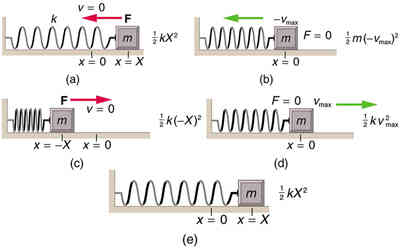 OpenStax: College Physics | CH16: Oscillatory Motion and