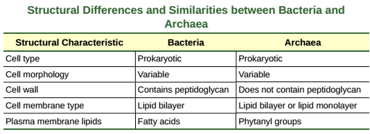 OpenStax: Biology | CH22: PROKARYOTES: BACTERIA AND ARCHAEA