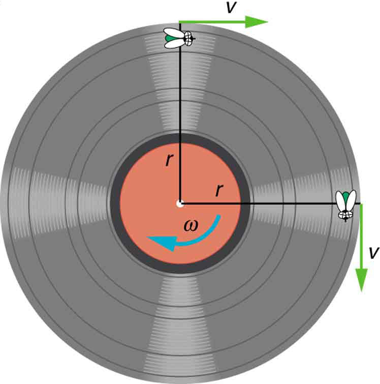 OpenStax: College Physics | CH6: Uniform Circular Motion and