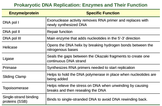 Openstax Biology Ch14 Dna Structure And Function Top Hat