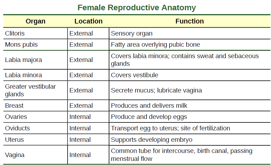 Openstax Biology Concepts Ch18 Animal Reproduction And