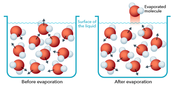 General Chemistry | Reading Assignment: Liquids, Solids, and