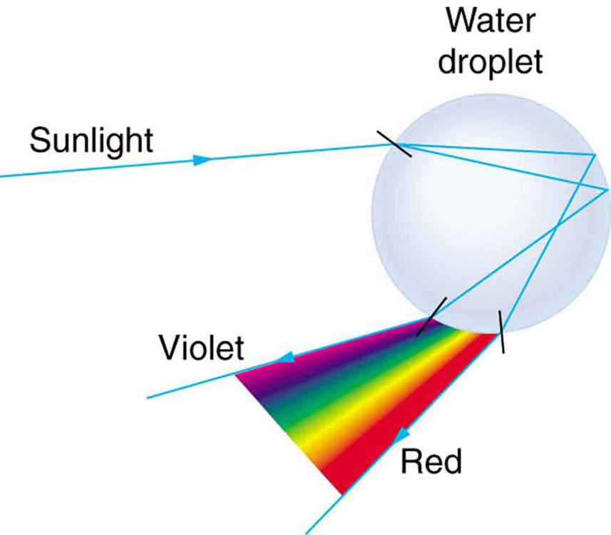OpenStax: College Physics   CH25: Geometric Optics   Top Hat