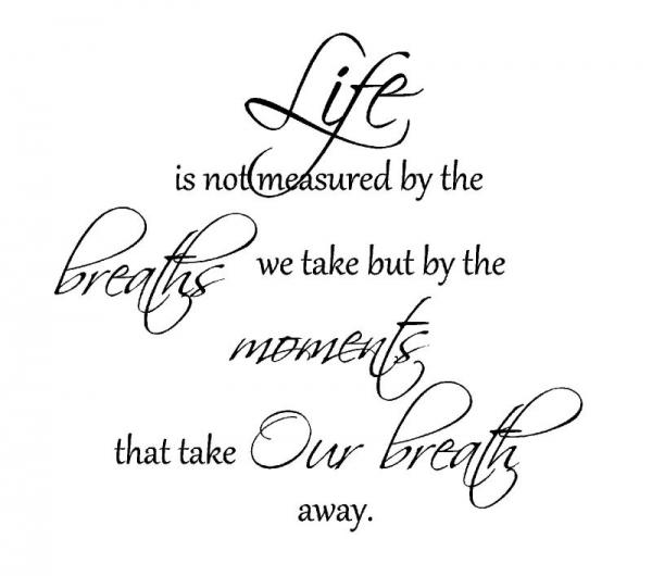 Vinyl Wall Art Life Not Measured Breaths We Take Words Decals