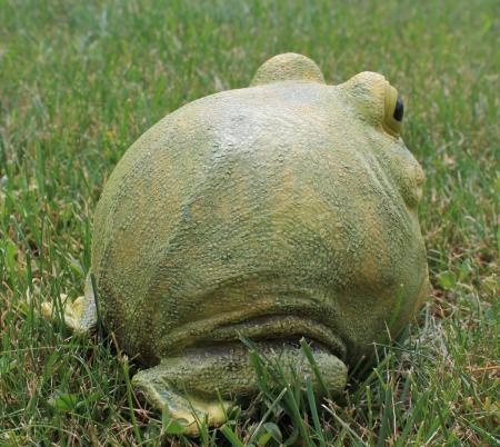 Portly Frog Hide A Key Garden Statue Outdoor Decor