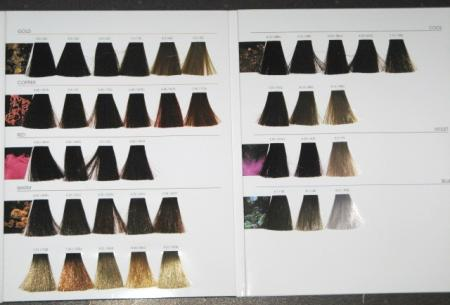 ... hair color swatch book new full oreal inoa for the full hair coloring
