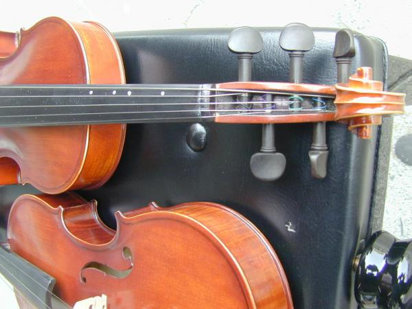 5 String Tiger Framed Violin