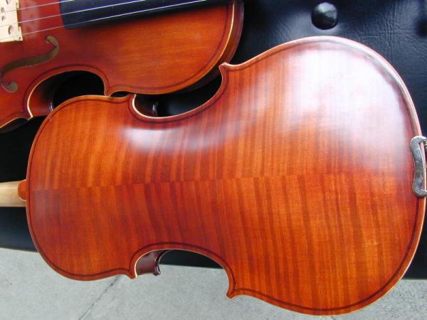 Tiger Framed Violin