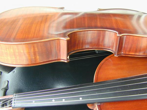 Violin Bout