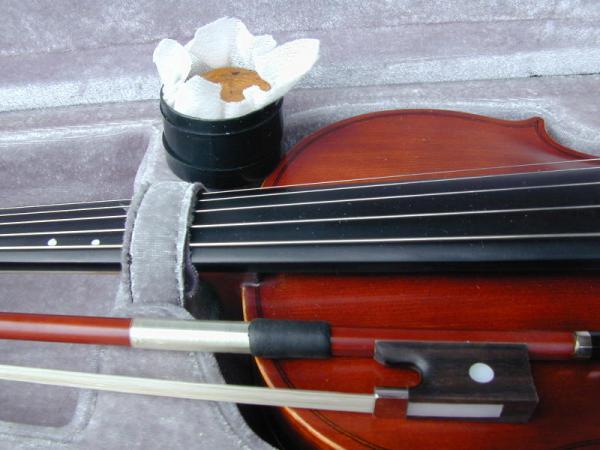 5 String Violin With Violin Bow In Case