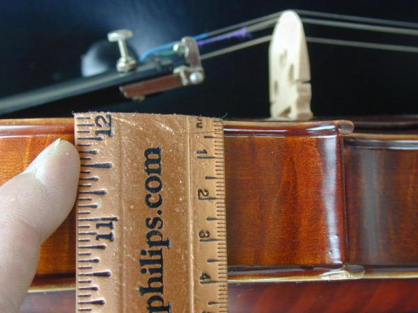 Tiger Frame Violin Thickness