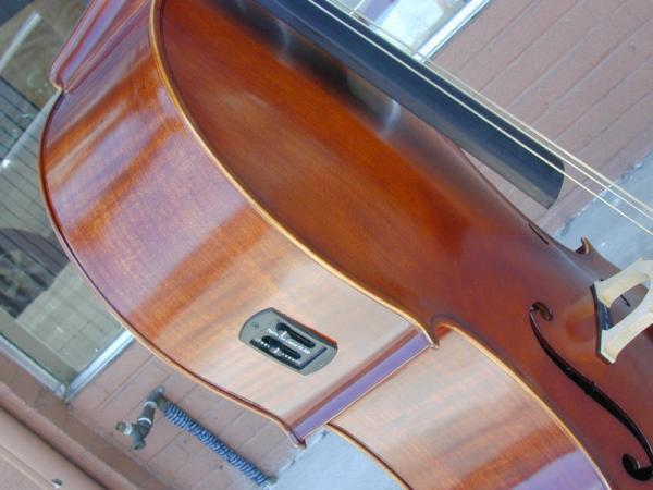Tiger Framed Electronic Cello
