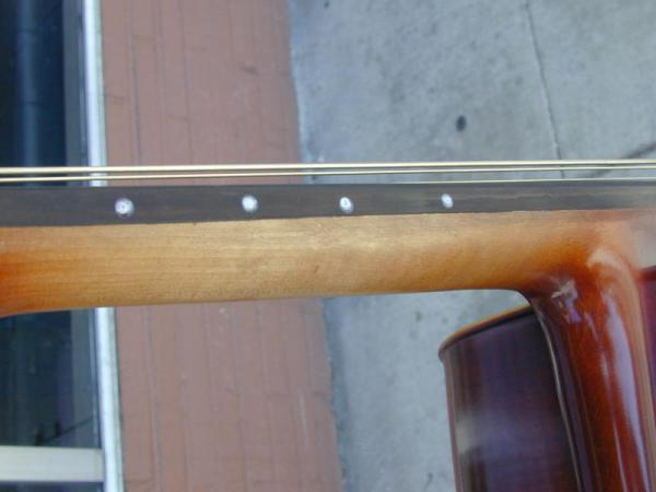 Tiger Framed Cello Neck