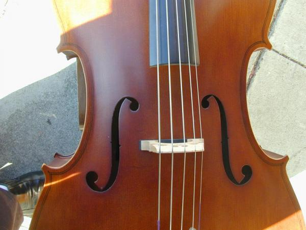 5 Strings Cello