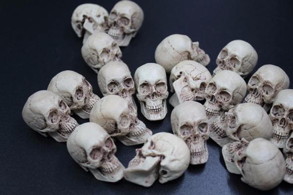"1//6 Skull Head Sculpt Carved Scene Props Model Accessories for 12/"" Figure Action"