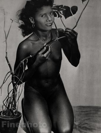 vintage negro slave porn